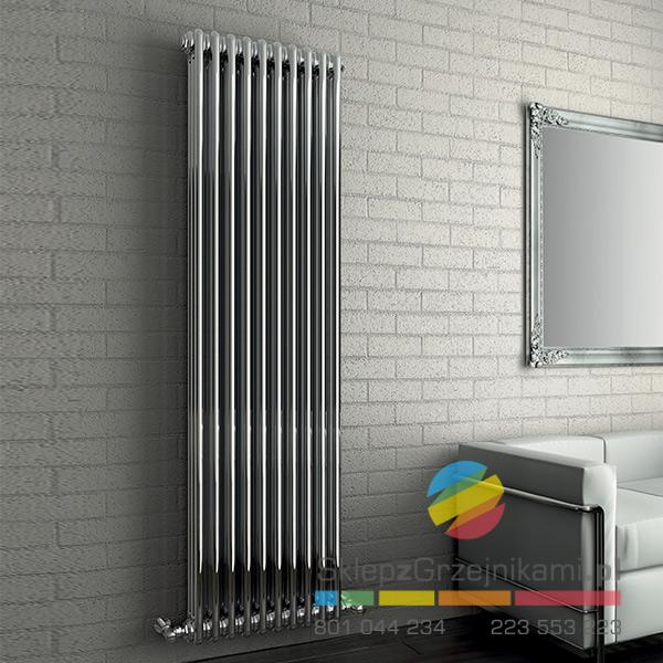 https://www.sklepzgrzejnikami.pl/components/com_virtuemart/shop_image/product/tesi-2-chrom-2002-x-564-tesi-2-w-powloce-galwanicznej.jpg